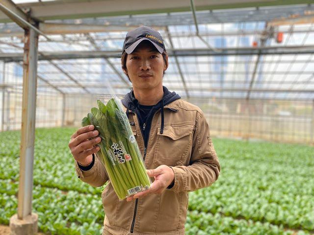 写真は「門倉農園」園主の門倉周史さん。手にしている小松菜は200グラムで、今回販売する500グラムは約2束分に相当する
