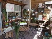 鹿児島の雑貨カフェにオープンテラス-ガーデニング雑貨店とコラボ展開