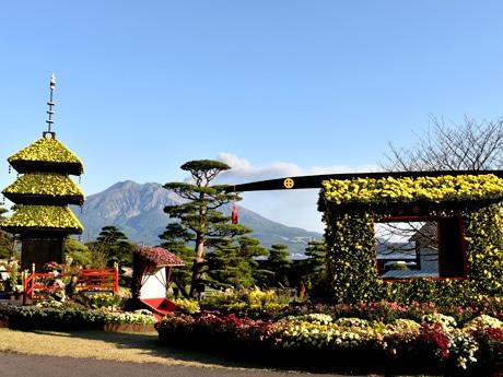 菊花で彩られた三重塔、人力車、花籠。