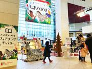 鹿児島中央駅AMU広場で写真作品の展示 2500冊のフォトブックが集結