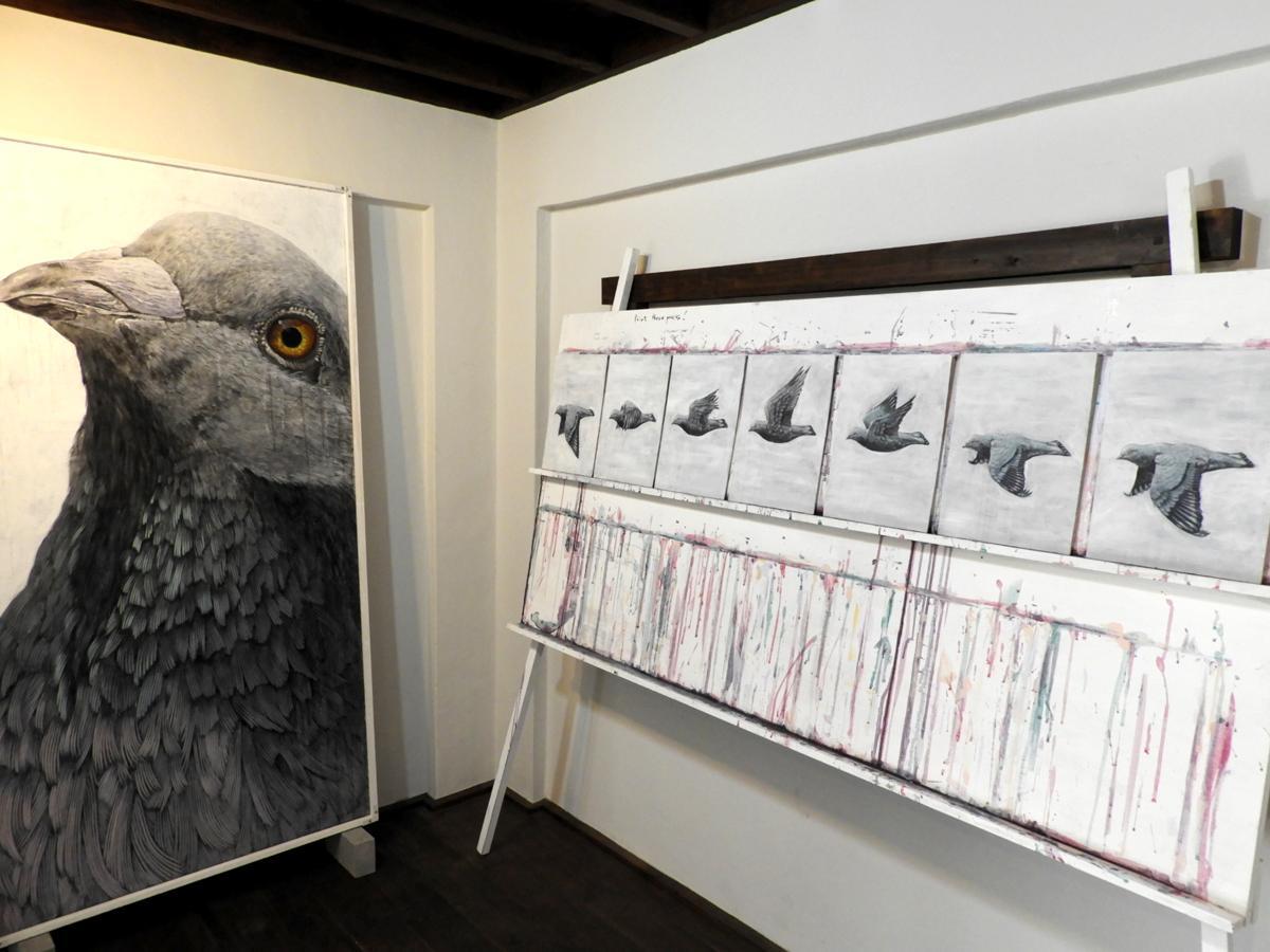 東慎一郎さんが描く「鳩」
