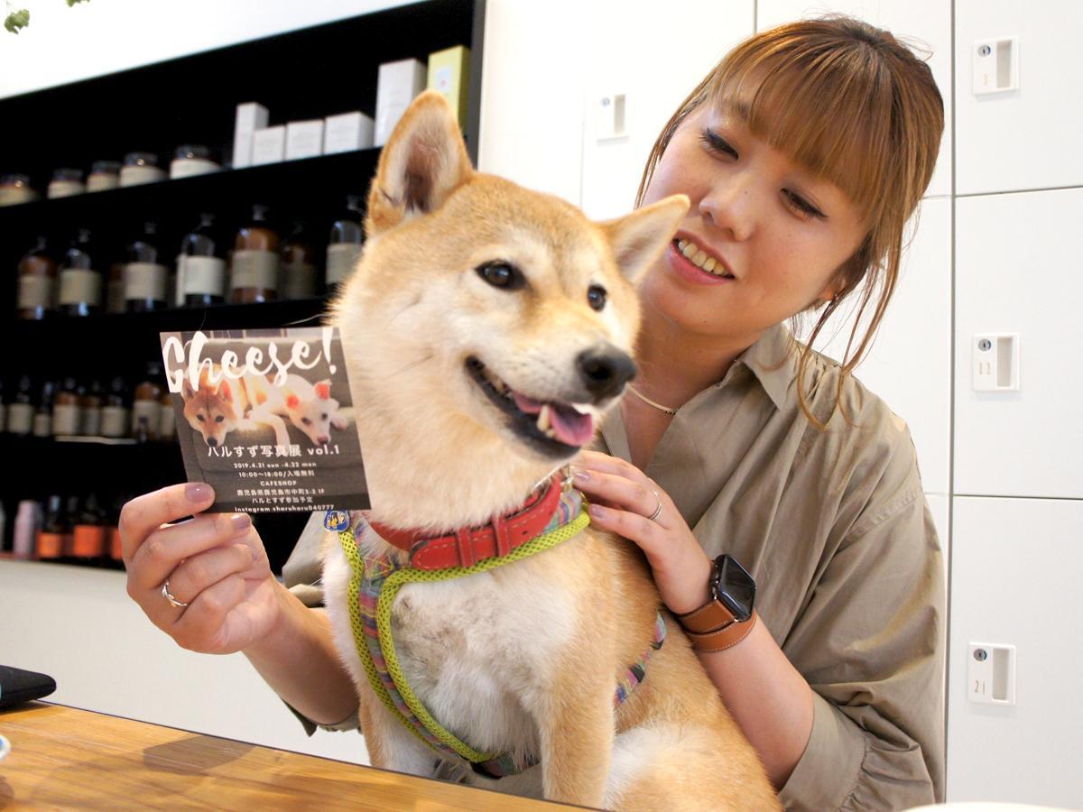橋本さんと柴犬のハルちゃん