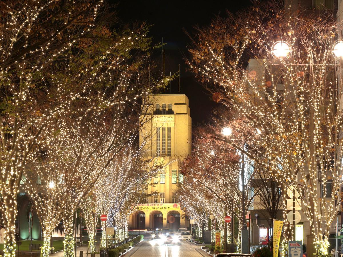 「みなと大通り公園イルミネーション」と「鹿児島市役所」ライトアップ