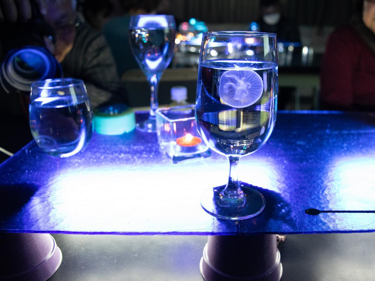 参加者一人一人に用意されたクラゲ入りのグラス