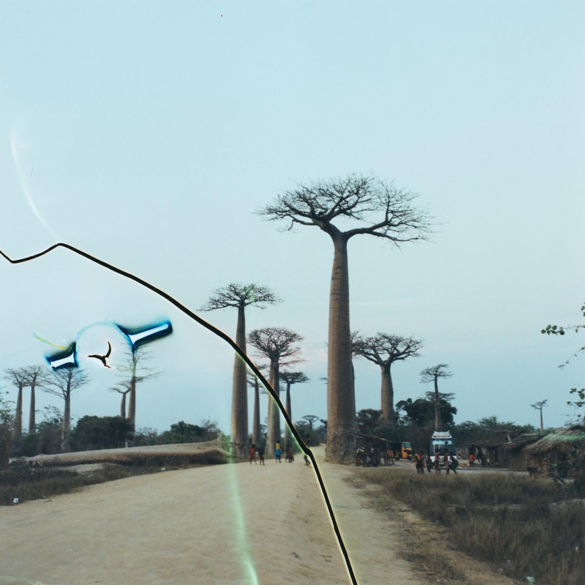 南アフリカの現像所でネガを切られてしまった作品