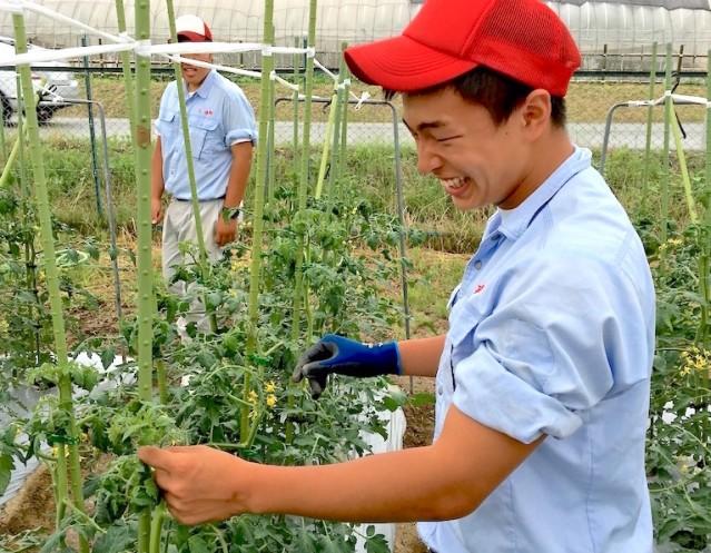 兵庫県立農業高校の生徒が農作業を行う様子