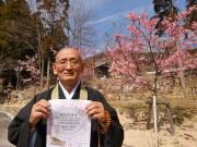 加古川の寺院境内でフリーマーケット 「花見ついでに気軽に楽しんで」