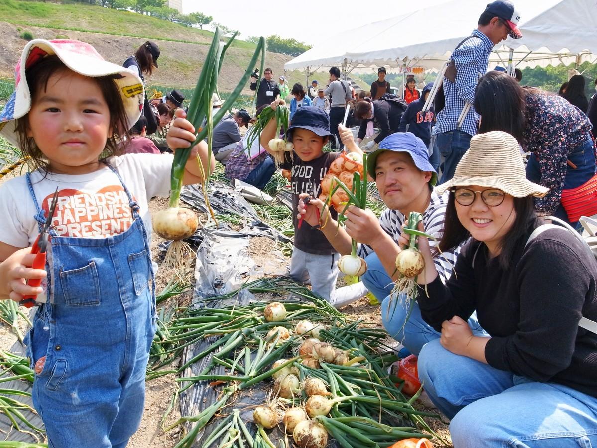 玉ねぎの収穫を楽しむ岡崎さん家族