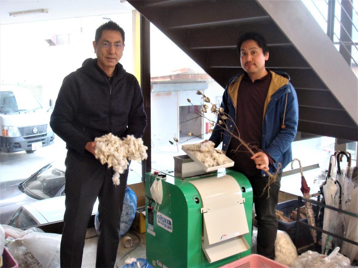 綿花と綿の木を手にするする鷲尾さん(左)と寄玉さん
