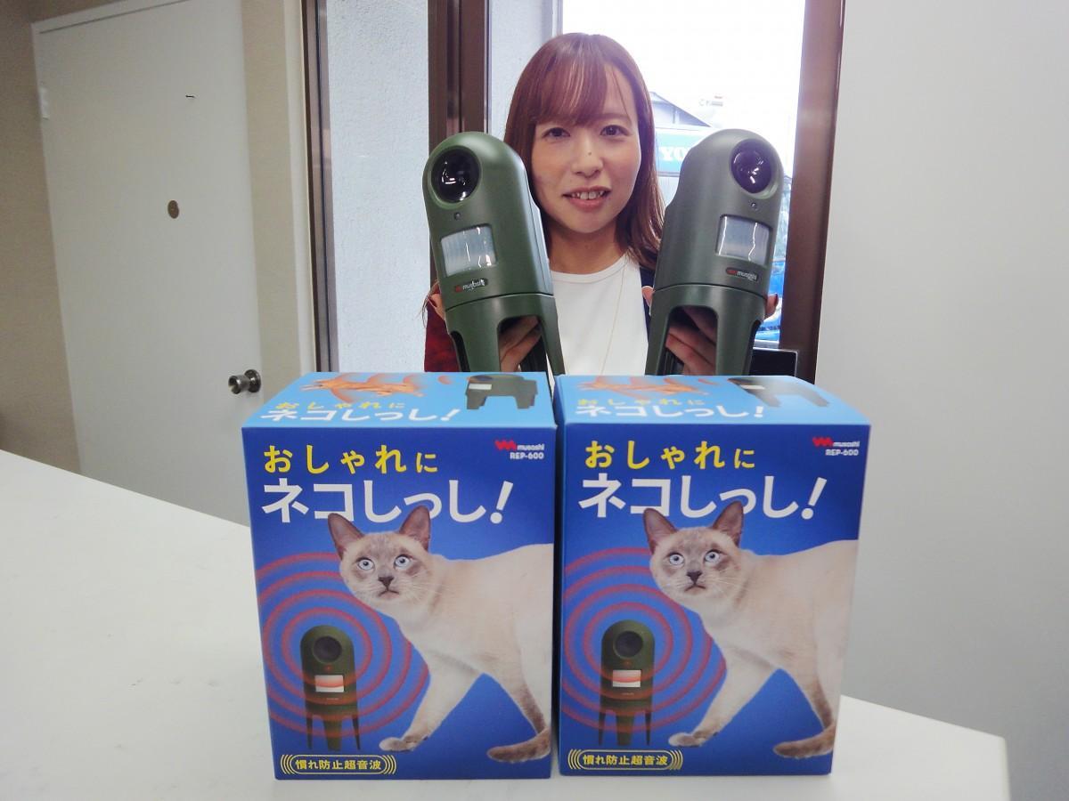 猫忌避製品を手に持つ増田さん