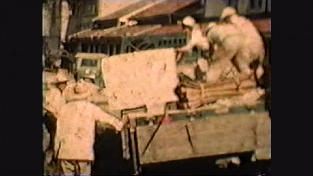 発見された竜山石の映像