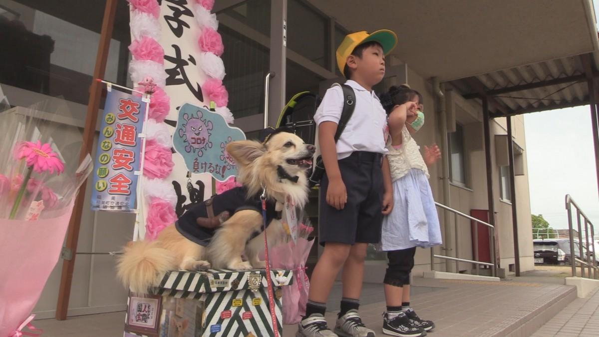 交通安全啓発犬「ラビ」と写真を撮る新入学生