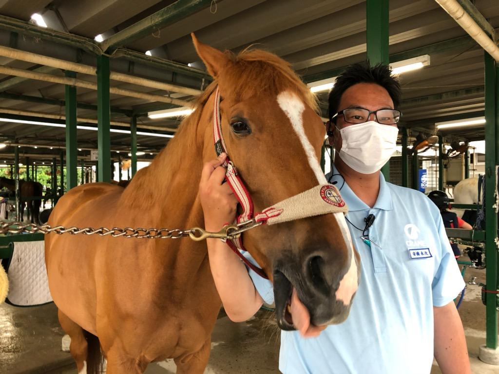ひん馬のセイリングオーダーとニッケ乗馬クラブ・クレイン加古川の安橋さん