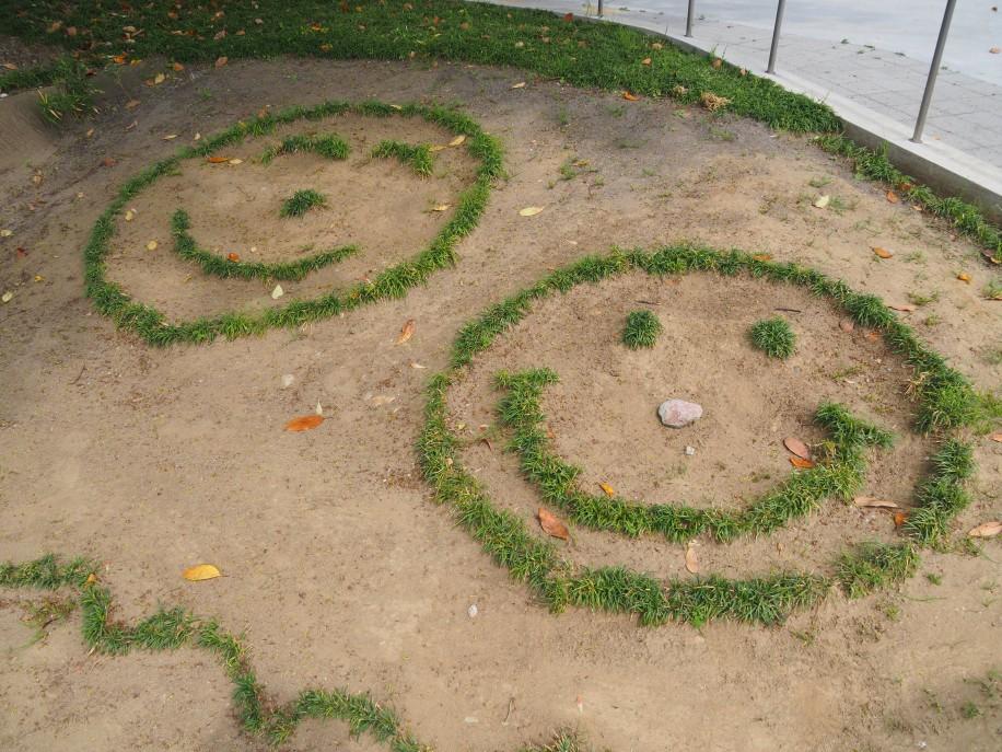 同署前の植え込みに緑のスマイルがくっきり。子どもが置いた石が鼻になっている