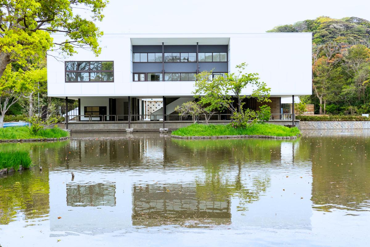 右隣の新館がなくなり建物が際立つ印象。新設した遊歩道を進み池越しに建物を鑑賞できるビューポイントから