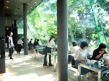 窓からの緑もごちそう「ル ミュゼ ド アッシュKANAZAWA」
