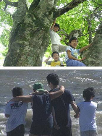 子どもをテーマにした特集で上映されている「大きな家」と「風のかたち」の一場面