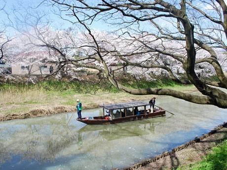 大聖寺名物の流し舟を楽しむモニターツアー