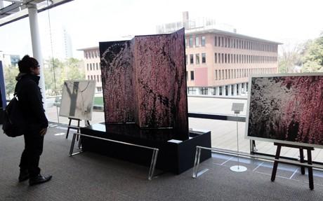 先行開催されている織作峰子さんの写真展