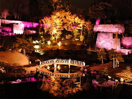 ライトアップされた玉泉院丸庭園