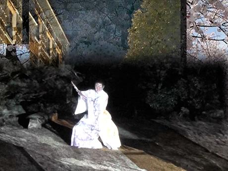 昨年4月に開催された「金澤月下艶舞」の様子