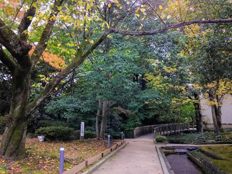 「森の中」を開催する本多の森公園周辺