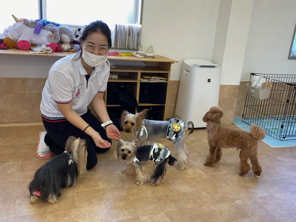 「いぬの保育園ペロ」園長の浅賀慶子さん