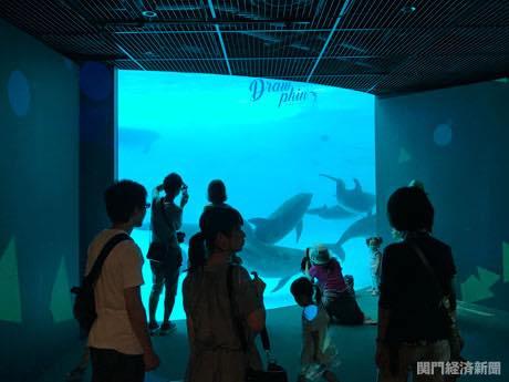 下関水族館・海響館で「イルカ音」デジタルアート展示 音と図形連動