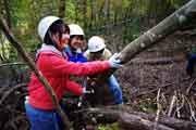 「林業女子会@京都」がフリーペーパー創刊-女子目線で木に関わる生活提案