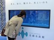 京都駅にクラゲの水槽-開業迫る「京都水族館」PRで