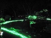 京都・梅小路公園でライトアップイベント 京都水族館も夜間営業