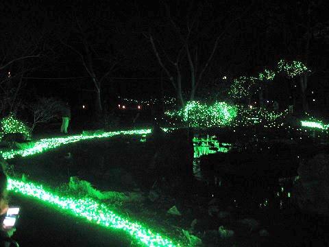冬のホタルをイメージした、河原遊び場のライトアップ