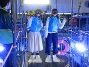 京都水族館「バックヤード、お見せします」 5周年で体験企画拡充