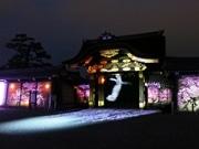 京都・二条城で「桜まつり」 唐門や庭園のプロジェクションマッピングも