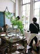 「京都ふるどうぐ市」 元立誠小学校で最後の開催へ、過去最多48店が出店