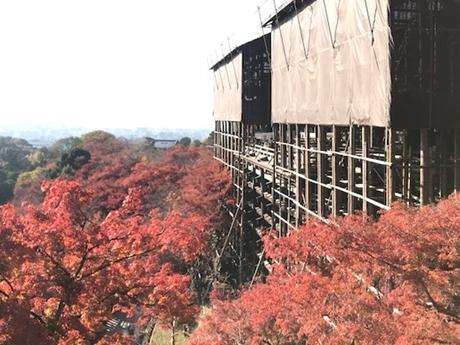 「今年の漢字」発表を行う清水寺の舞台。現在も工事が行われている