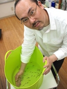 綾瀬の理髪店、節電還元で「ドクターフィッシュ」導入-足の角質を餌に
