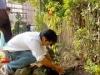 次の世代に緑を残したい-亀有香取神社で植樹式典