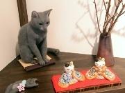 「夜廻り猫」の世界をファンが表現 川越のカフェで手作り作品展