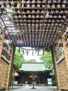 川越氷川神社に藤色の「風車」お目見え 初夏の風物詩に