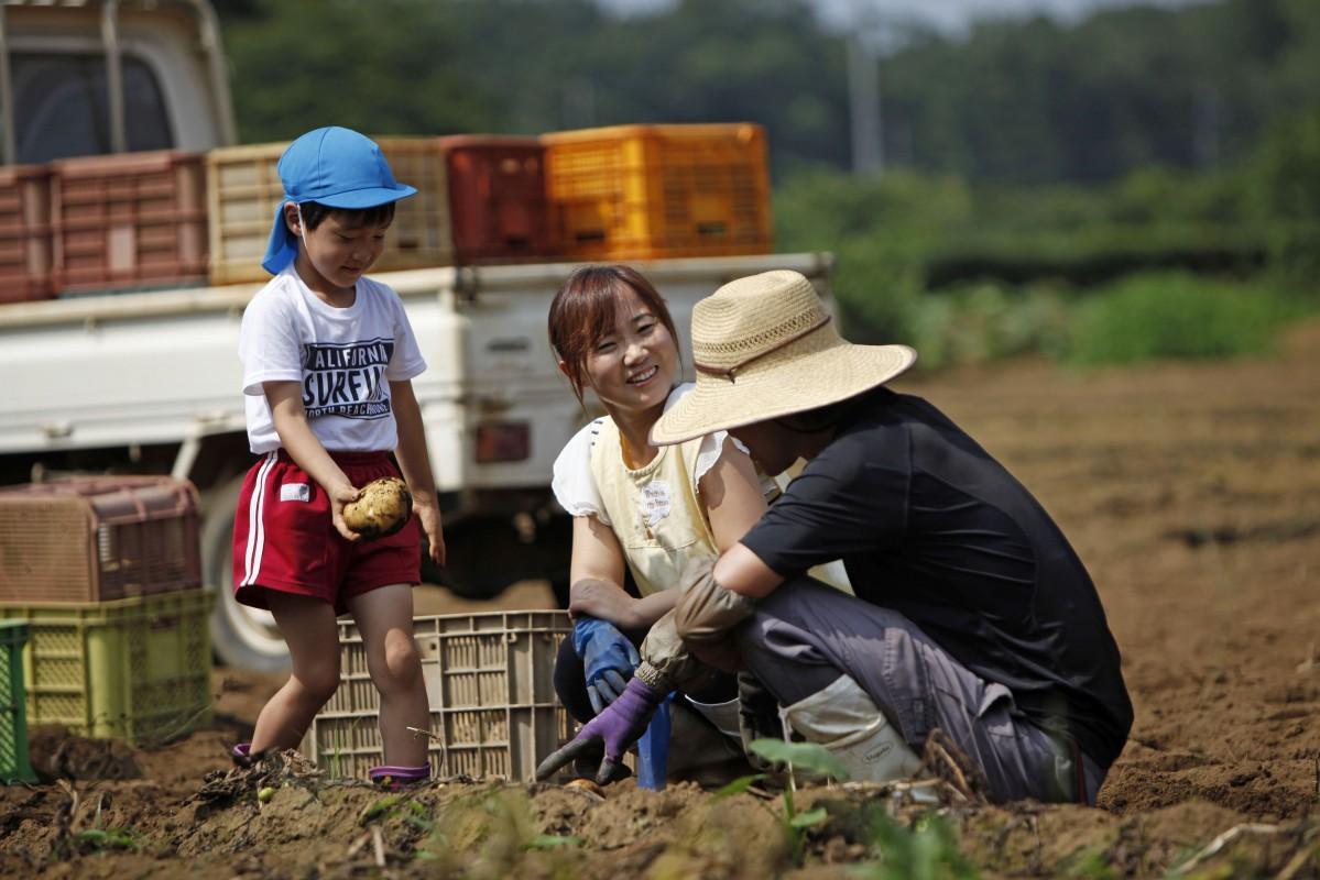 映画「武蔵野」収穫場面