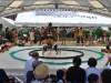 川越で「こども相撲大会」 今年は団体戦初開催