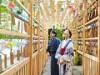 川越氷川神社で「縁むすび風鈴」 縁むすび風鈴回廊、「光る川」ライトアップなど
