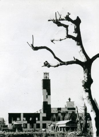 戦時中、迷彩色に塗装されていた川崎市庁舎 (提供:川崎市平和館)