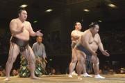 大相撲川崎場所、今年も 稀勢の里は横綱として初参加