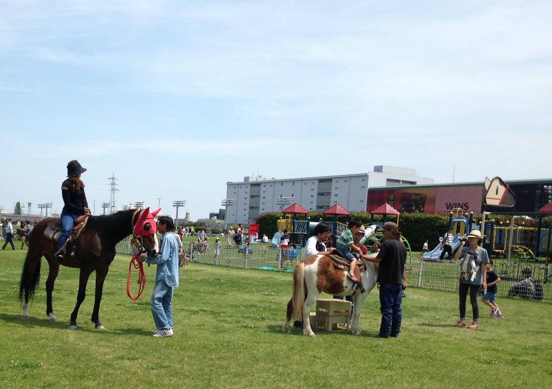 会場となる広々とした芝生広場