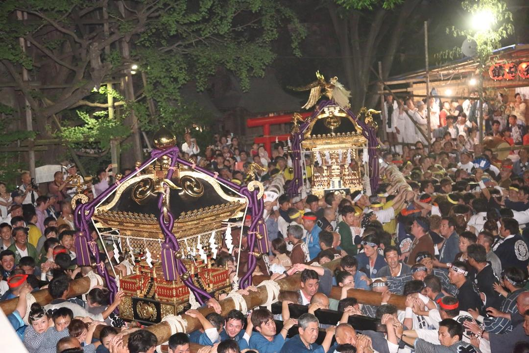 孔雀(右)と玉(左)の大みこしが町内を巡り稲毛神社を目指す