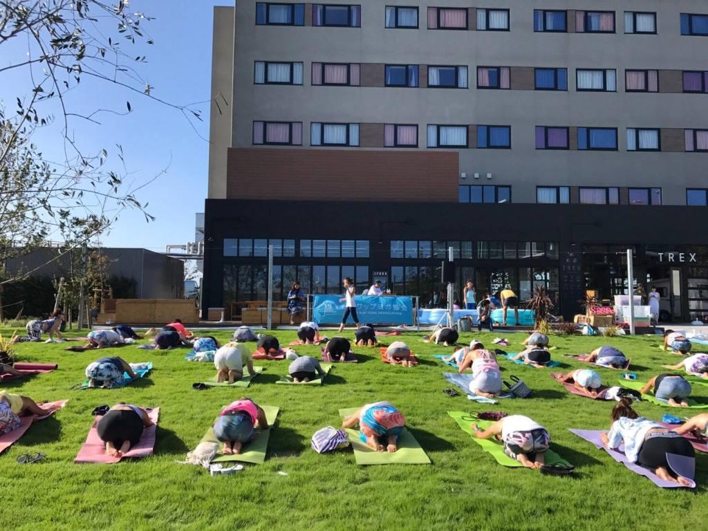 芝生でヨガイベントを体験する参加者たち
