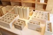 吉祥寺「BONDO」で植物展-多肉植物など「シカク」テーマに展示販売