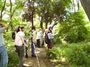 武蔵野市でシンポジウム 雑木林「独歩の森」の楽しみ方